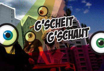 Logo Gscheit Gschaut